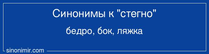 Стегно на русском скайп общение с иностранцем