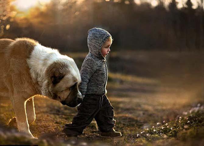 близкий друг собака